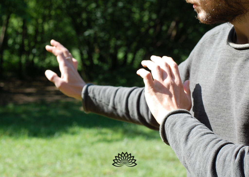 Qi Gong Tagesseminar Hannover